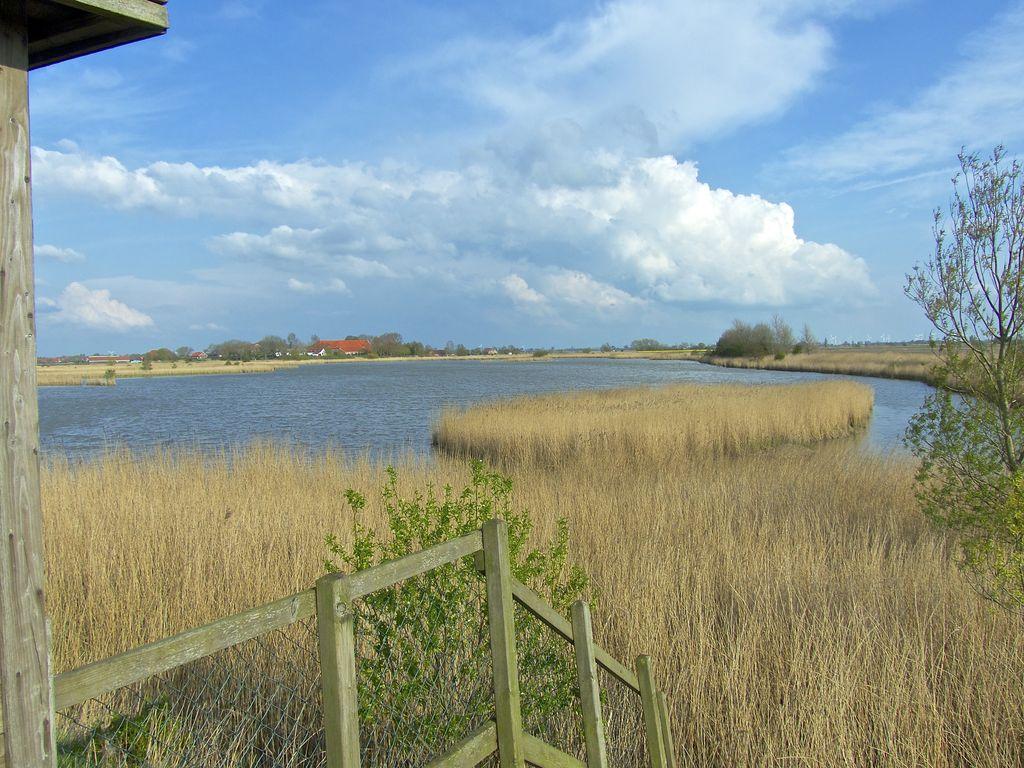 Vogelbeobachtungsstation Pilsum mit einem See und Schilff