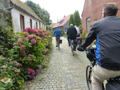 Bild Krummhörner Kirchturmtour Blumen