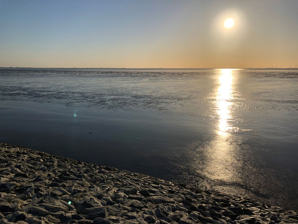 Bild Nationalpark Wattenmeer Hero