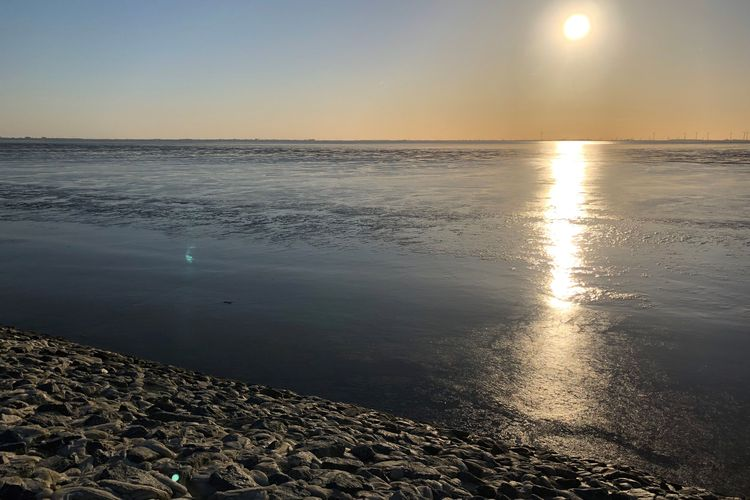 Bild Region Unesco Weltnaturerbe Wattenmeer