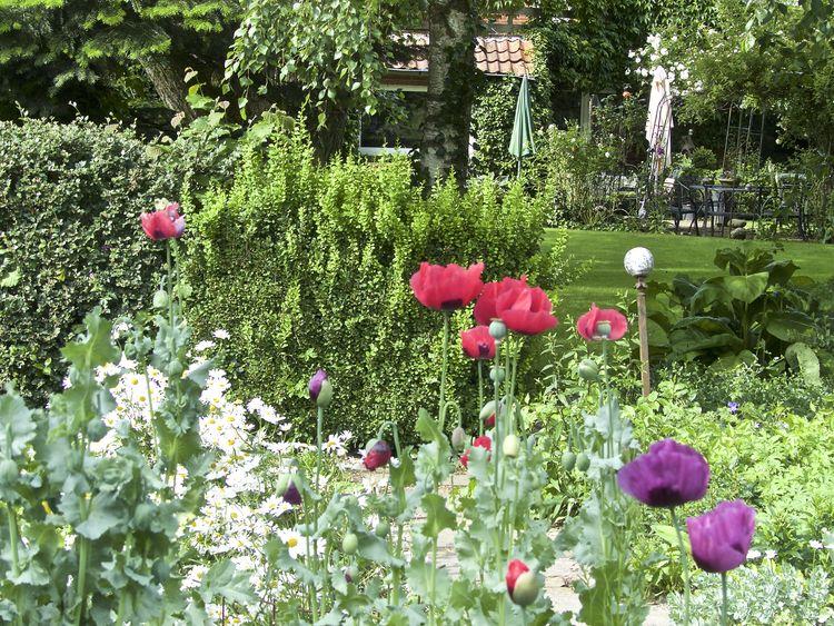 Bild Gartenroute Krummhörn Guide