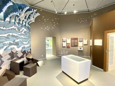 Bild Unesco Weltnaturerbe Wattenmeer Nationalpark-Haus Greetsiel Bild 2