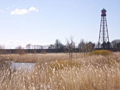Bild Campener Leuchtturm Feld