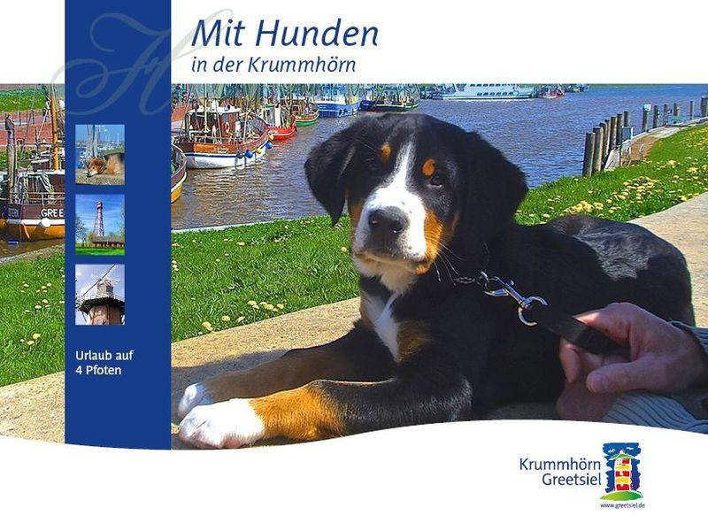 Titelbild Flyer und Prospekt Urlaub mit Hunden in der Krummhörn