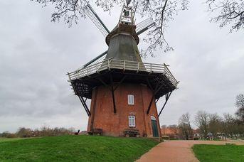 Grüne Mühle