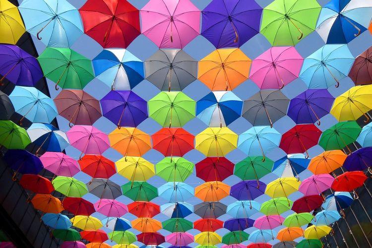 Bild Regenschirme Reiseversicherung