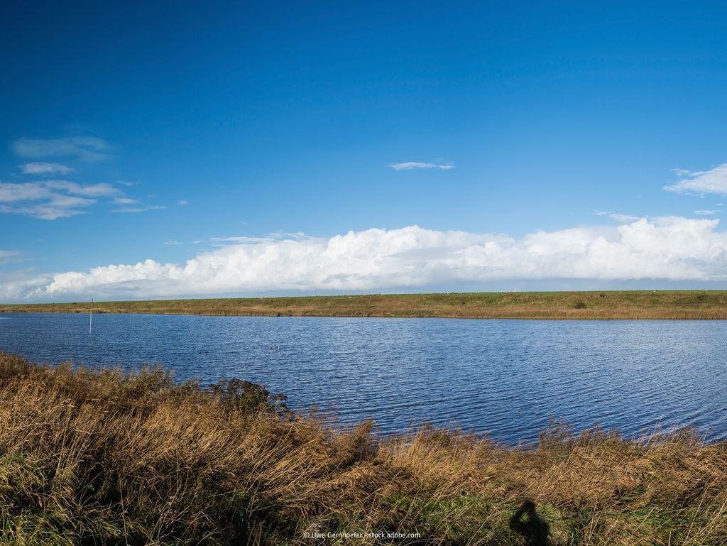 Bild Nationalpark weltnaturerbe wattenmeer Hero See