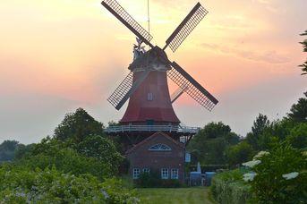 Mühle Schoof in Greetsiel