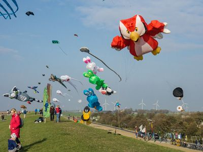 Bild Familien Drachenfest Himmel