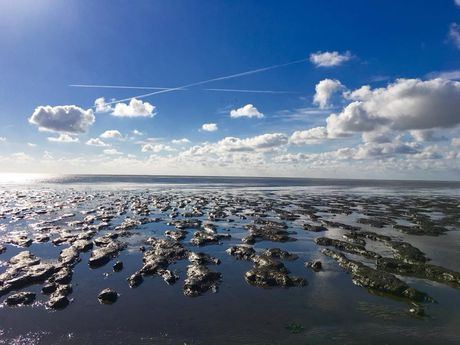 Landscape of UNESCO Wadden Sea World Heritage
